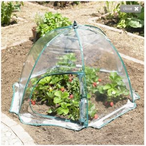 Henley Easy Up Mini Green house